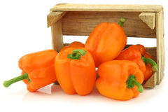 Fresh orange bell peppers and a cut one Royalty Free Stock Photography
