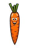 Fresh orange carrot vegetable Royalty Free Stock Photos