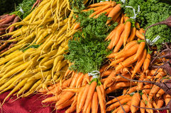 Fresh orange carrots on display at the market Royalty Free Stock Photo