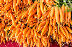 Fresh orange carrots at the market Royalty Free Stock Images