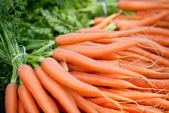 Fresh orange carrots on market in summer Royalty Free Stock Image