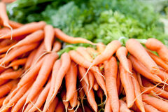 Fresh orange carrots on market in summer Royalty Free Stock Image