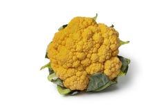 Fresh Orange cauliflower Stock Photos