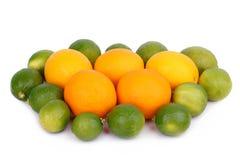 Fresh orange and citrus fruits Stock Image