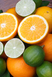 Fresh orange,citrus fruits Stock Image