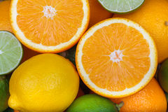 Fresh orange,citrus fruits Royalty Free Stock Photo