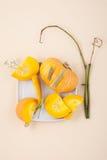 Fresh orange cut pumpkin and dried herbs on a light beige pastel Stock Photos