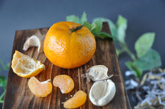 Fresh Orange with Dried Plant Stock Images