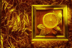 Fresh orange in frame Royalty Free Stock Image