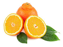 Fresh orange fruit with green leaves isolated on white backgroun Royalty Free Stock Photography