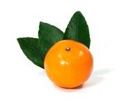 Fresh orange fruit isolated on white background Royalty Free Stock Image