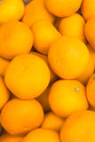 Fresh Orange fruit  is very much on the market background Royalty Free Stock Photography