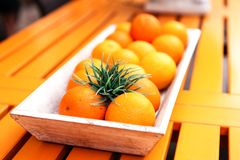 Fresh orange fruits decorative on table in summer Stock Photography