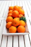Fresh orange fruits decorative on table in summer Royalty Free Stock Image