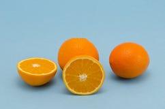 Orange fruits on azure background Stock Photos