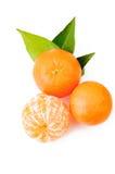 Fresh orange fruits isolated on white. Top view peeled mandarin Stock Images