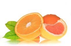 Fresh orange and grapefruit Royalty Free Stock Images