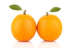 Fresh orange isolated on white background Royalty Free Stock Image