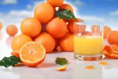 Fresh Orange Juice. Stock Image