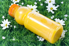 Fresh orange juice. A closeup of a bottle of squeezed orange juice with on grassy background Royalty Free Stock Photos