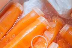 Fresh orange juice bottles on the ice. Stock Photo