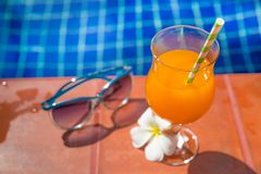 Fresh orange juice drink glass with flower and sunglasses on bor Royalty Free Stock Photography