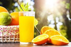 Fresh orange juice in glass beaker, slices of sliced oranges and basket on background of spring green nature with sunbeams royalty free stock image
