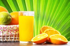 Fresh orange juice in glass beaker, slices of sliced oranges and basket of oranges on green background of palm branch royalty free stock photography