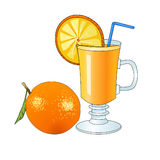 Fresh orange juice in glass mug. Crude orange. Refreshing drink. Vitamin cocktail. Circle of orange. Healthy useful food. Vector. Stock Images