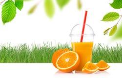 Fresh orange juice. Stock Images