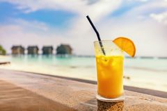 Fresh orange juice by the poolside. Tropical island in Maldives. Fresh orange juice by the poolside. Tropical island resort in Maldives, Indian Ocean Royalty Free Stock Images