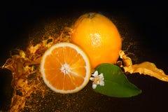 Fresh Orange In Juice Splash Stock Photography