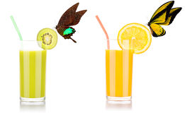 Fresh orange and kiwi juice with butterfly Stock Photos