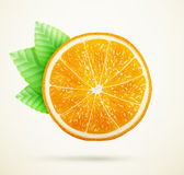 Fresh orange with leaves Stock Images