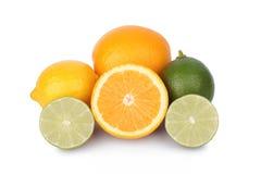Fresh orange,lemon and citrus fruits Royalty Free Stock Photos