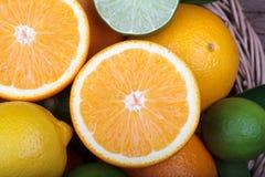 Fresh orange,lemon and citrus fruits Royalty Free Stock Image
