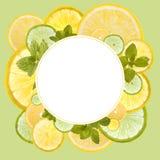 Fresh orange, lemon and lime background Royalty Free Stock Photography
