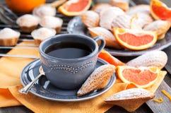 Fresh orange madeleines cookies Stock Photo