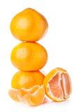 Fresh orange mandarin Stock Image
