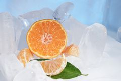 Fresh orange mandarin fruit with green leaves are frozen on cold blue ice. Royalty Free Stock Photo