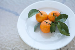 Fresh orange mandarines Royalty Free Stock Photos
