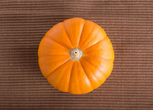 Fresh orange pumpkin Royalty Free Stock Photos