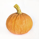 Fresh orange pumpkin isolated on white Royalty Free Stock Photography