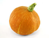 Fresh orange pumpkin. Stock Photos