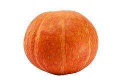 Fresh orange pumpkin isolated on white background Royalty Free Stock Photography