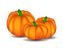 Fresh Orange Pumpkin Isolated on White Background Royalty Free Stock Photos