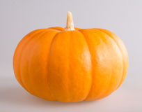 Fresh orange pumpkin Stock Image