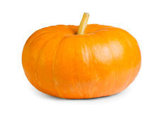 Fresh orange pumpkin Royalty Free Stock Photo
