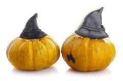 Fresh orange pumpkins Stock Photography