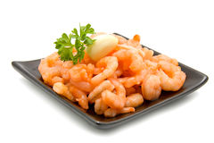 Fresh orange shrimps Stock Photography